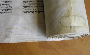 Adhesive creep on sefer Torah