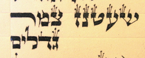 One of the places in Torah where the seven crowned letters cluster together